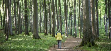A contatto con la natura per ritrovare salute e benessere